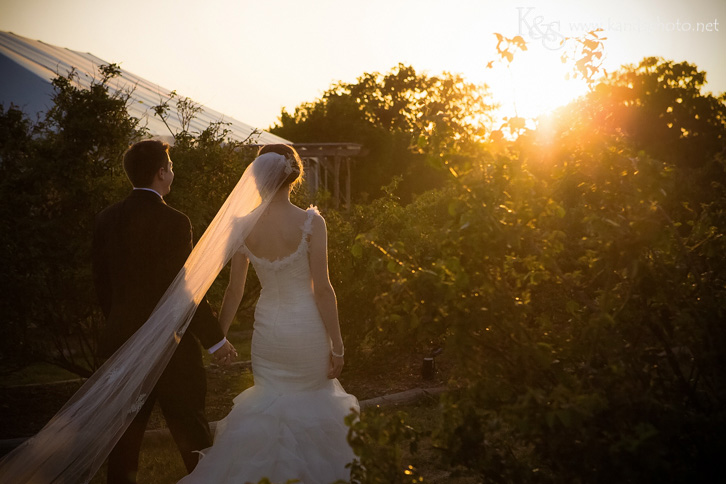 Clark Gardens Wedding in Weatherford by Dallas Wedding Photographers - K & S PhotographyClark Gardens Wedding in Weatherford by Dallas Wedding Photographers - K & S Photography