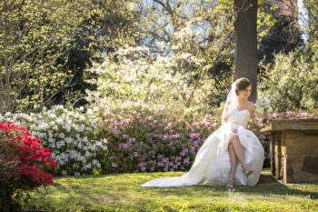 lee park dallas bridals
